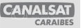 Logo Canalsat Carabes National Geographic Channel