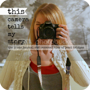 photo thiscameratellsmystorylogo_zps39210d2e.png